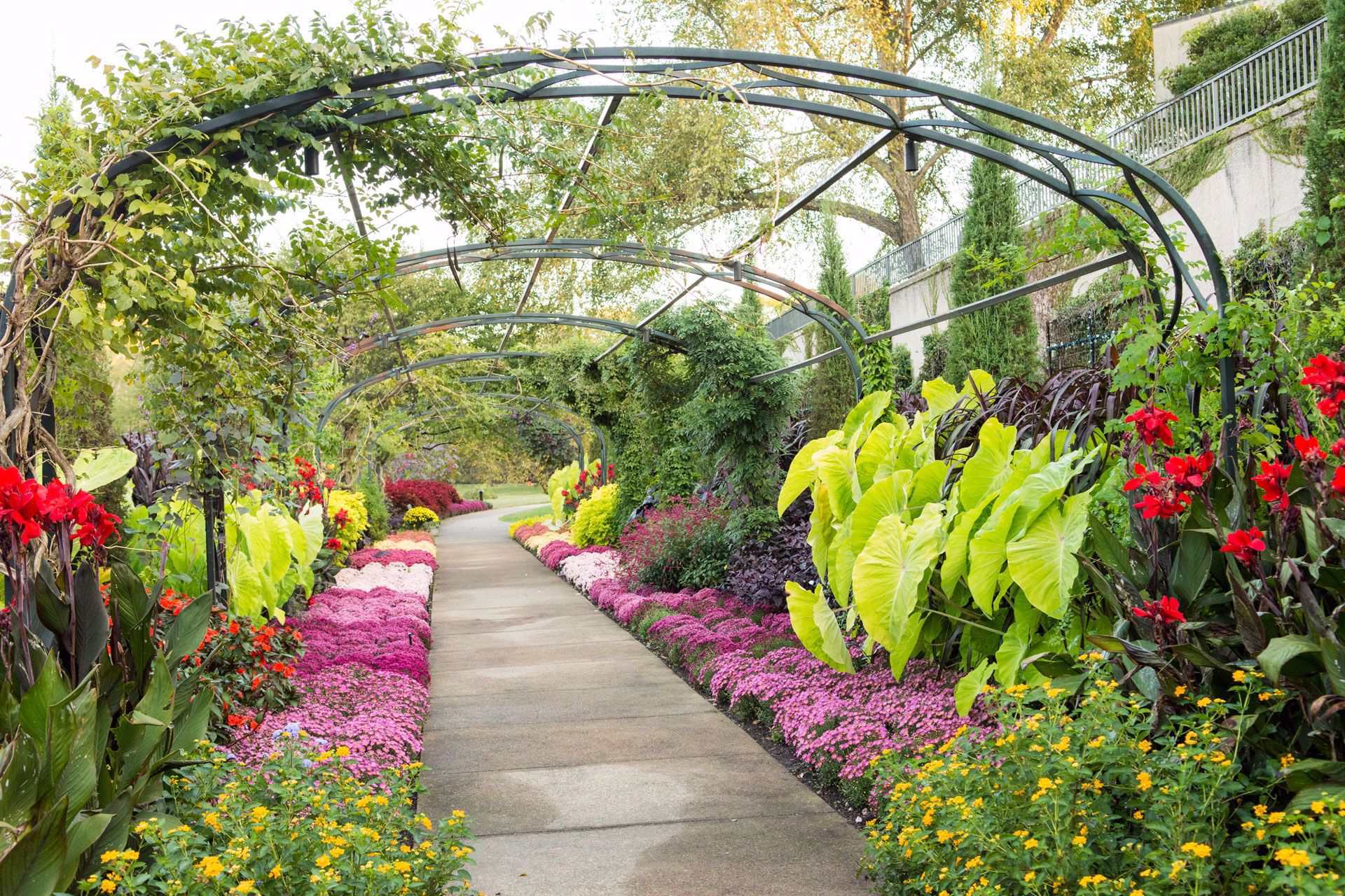 Beauty and excellence in art and horticulture