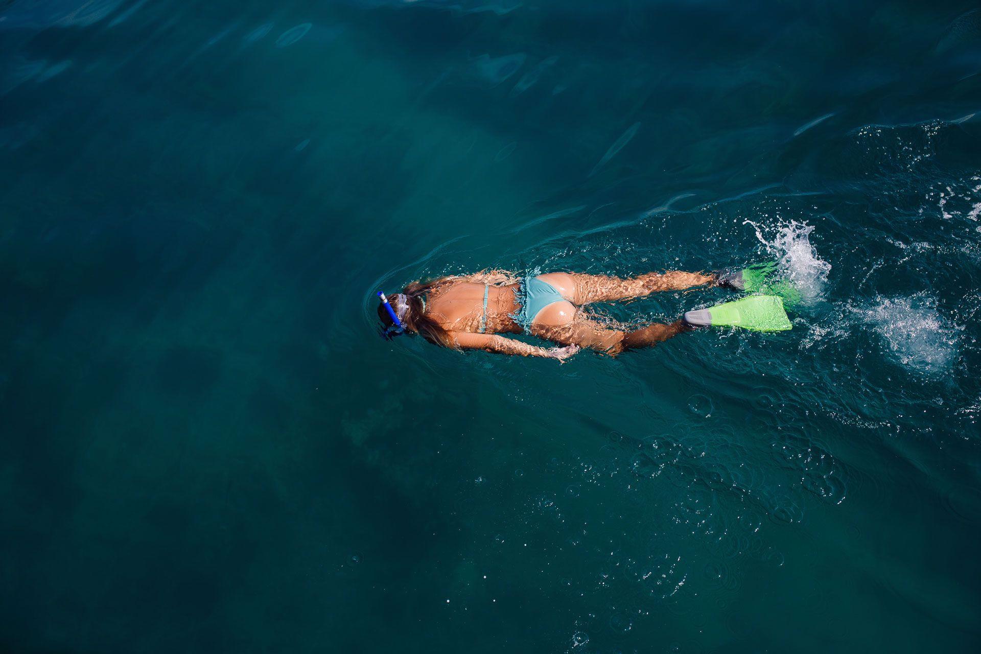 3 Hr Dip & Sip Snorkel Trip